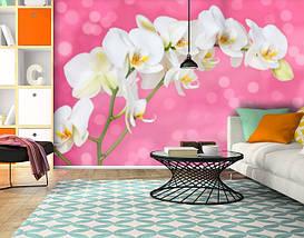 Фотообои текстурированные, виниловые Цветы, 250х380 см, fo01inV_fl101953, фото 2