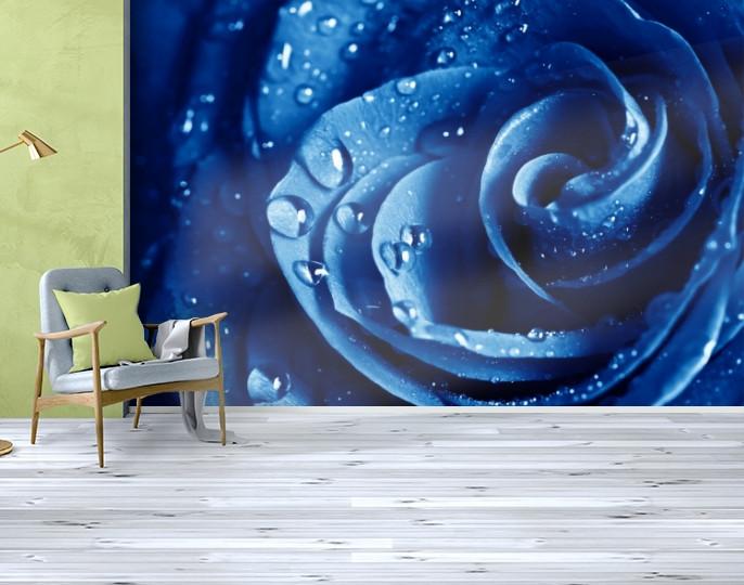 Фотообои текстурированные, виниловые Цветы, 250х380 см, fo01inV_fl13708