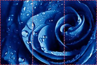 Фотообои текстурированные, виниловые Цветы, 250х380 см, fo01inV_fl13708, фото 2
