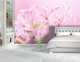Фотообои бумажные гладь, Цветы, 200х310 см, fo01inB_fl10777, фото 2