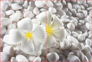 Фотообои бумажные гладь, Цветы, 200х310 см, fo01inB_fl102498, фото 2