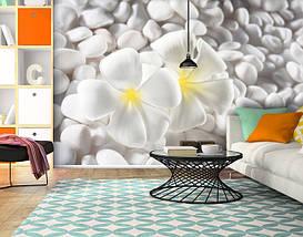 Фотообои текстурированные, виниловые Цветы, 250х380 см, fo01inV_fl102498, фото 3