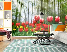 Фотообои текстурированные, виниловые Цветы, 250х380 см, fo01inV_fl12624, фото 2