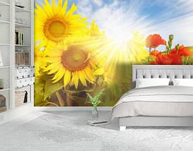Фотообои бумажные гладь, Цветы, 200х310 см, fo01inB_fl11035, фото 2