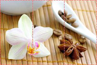 Фотообои текстурированные, виниловые Цветы, 250х380 см, fo01inV_fl12872, фото 2