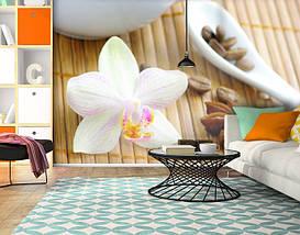Фотообои текстурированные, виниловые Цветы, 250х380 см, fo01inV_fl12872, фото 3