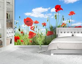 Фотообои бумажные гладь, Цветы, 200х310 см, fo01inB_fl13138, фото 2