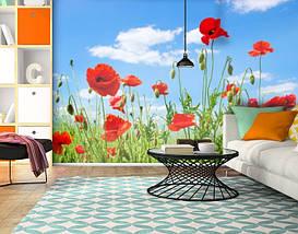 Фотообои бумажные гладь, Цветы, 200х310 см, fo01inB_fl13138, фото 3