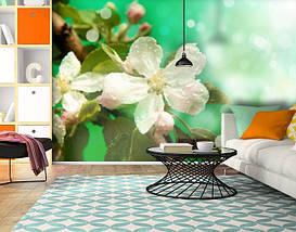 Фотообои бумажные гладь, Цветы, 200х310 см, fo01inB_fl101440, фото 3