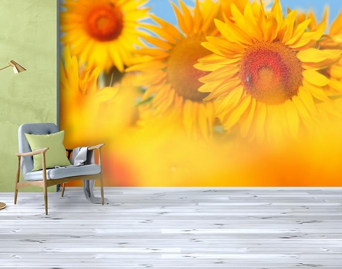 Фотообои текстурированные, виниловые Цветы, 250х380 см, fo01inV_fl10687