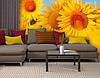 Фотообои текстурированные, виниловые Цветы, 250х380 см, fo01inV_fl10687, фото 3