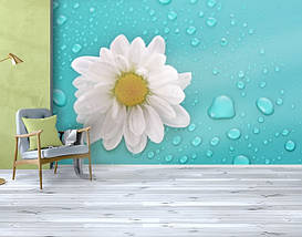 Фотообои текстурированные, виниловые Цветы, 250х380 см, fo01inV_fl102364, фото 3