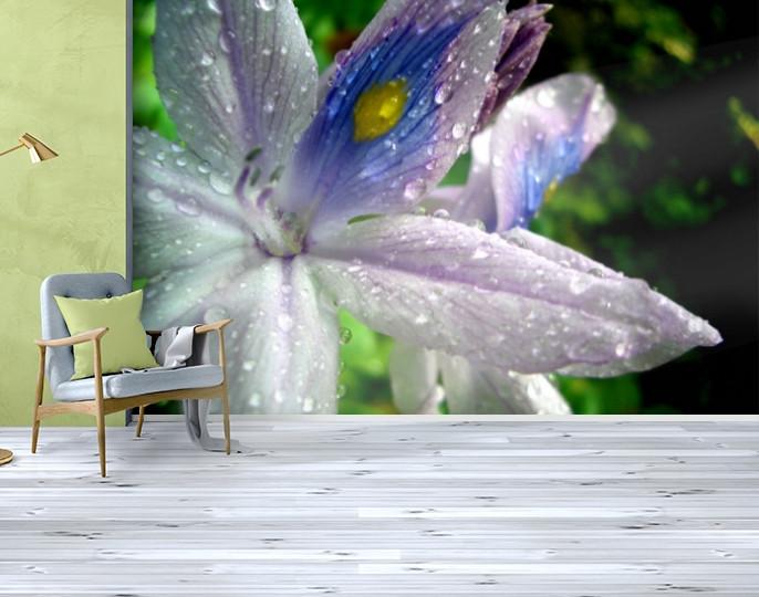 Фотообои текстурированные, виниловые Цветы, 250х380 см, fo01inV_fl101106
