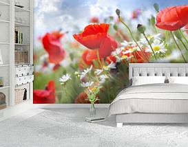 Фотообои бумажные гладь, Цветы, 200х310 см, fo01inB_fl12018, фото 2