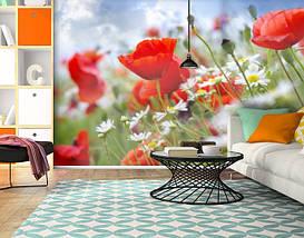 Фотообои бумажные гладь, Цветы, 200х310 см, fo01inB_fl12018, фото 3