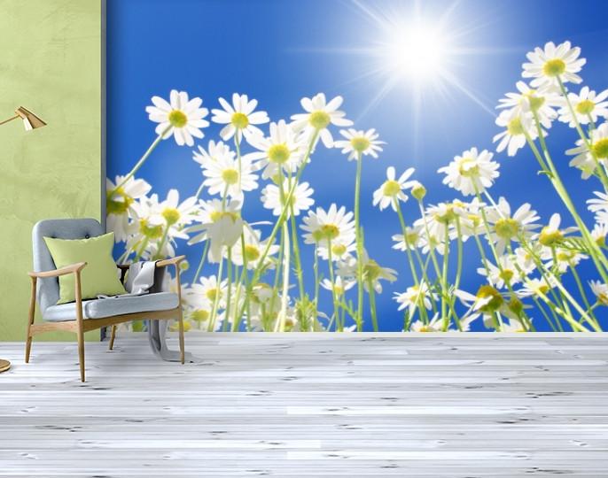 Фотообои бумажные гладь, Цветы, 200х310 см, fo01inB_fl102563
