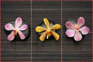 Фотообои текстурированные, виниловые Цветы, 250х380 см, fo01inV_fl102566, фото 2