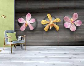 Фотообои текстурированные, виниловые Цветы, 250х380 см, fo01inV_fl102566, фото 3