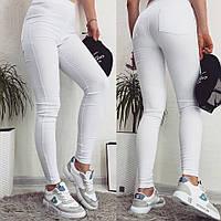 Джеггинсы с джинс-котона 42, 44, 46 р. (10 цветов)