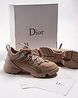 Женские кроссовки в стиле Dior (Топ качество)