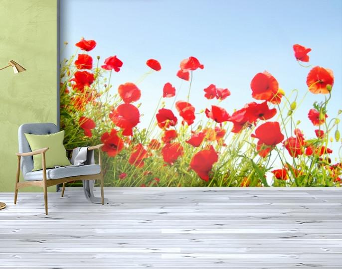 Фотообои бумажные гладь, Цветы, 200х310 см, fo01inB_fl102603
