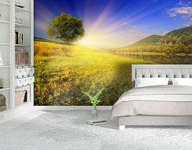 Фотообои текстурированные, виниловые Горы, реки, 250х380 см, fo01inV_pr10720, фото 2