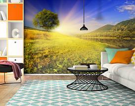 Фотообои текстурированные, виниловые Горы, реки, 250х380 см, fo01inV_pr10720, фото 3