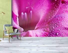 Фотообои текстурированные, виниловые Цветы, 250х380 см, fo01inV_fl102888, фото 3