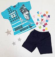 """Детский повседневный комплект на мальчика """"Лошадка"""", р. 3-6 лет, голубой, фото 1"""