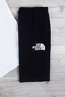 Мужские стильные шорты The North Face  удобные стильные в черном цвете, ТОП-реплика