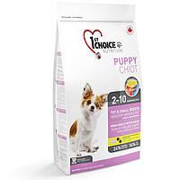 Корм с ягненком и рыбой для щенков МИНИ и малых пород собак . 1st Choice Puppy Toy&Small Lamb&Fish, 2,72кг
