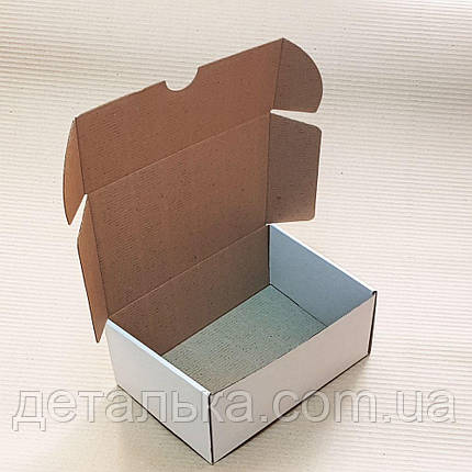 Самосборные картонные коробки 100*100*24 мм., фото 2