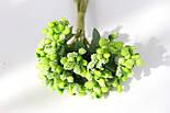 """Добавка """"слоные тычинки"""" 144 шт/уп. оптом салатового   цвета, фото 4"""