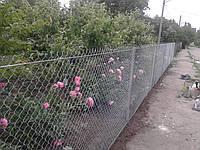 Забор для грядки