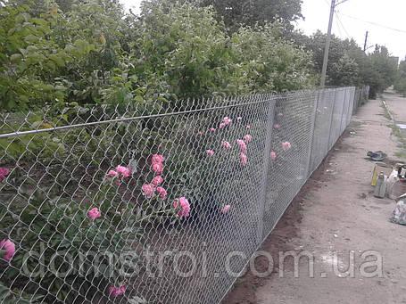 Забор для грядки, фото 2