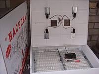 Инкубатор бытовой Наседка ИБ-140 с механическим переворотом и цифровым терморегулятором