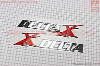 """Наклейка """"DELTA"""" на пластик боковой лев, прав к-кт 2шт (25х6см)"""