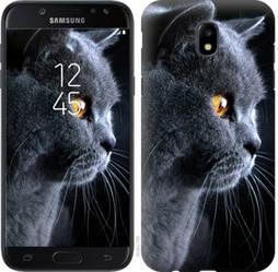"Чехол на Galaxy J5 J530 (2017) Красивый кот ""3038c-795-328"""