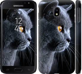 """Чехол на Galaxy J3 (2017) Красивый кот """"3038c-650-328"""""""
