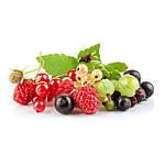Для плодово-ягодных