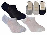 Носки для мальчика короткие Katamino Турция однотонные K90009