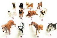 Резиновые фигурки Собачки в ассортименте резиновые Гонконг 24/864
