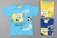 Футболка для мальчиков Sponge Bob оптом , 98/104-122 pp., фото 1