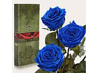 """Три долгосвежих розы Florich """"Синий сапфир"""" 7 карат на коротком стебле"""