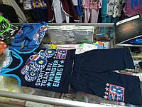 Костюм детский летний шорты с карманами и майка для мальчика  р.98 - 116