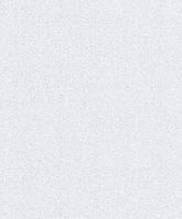 Обои Bravo  виниловые на бумажной основе 0,53 х 10м. однотонные ,потолок, стена