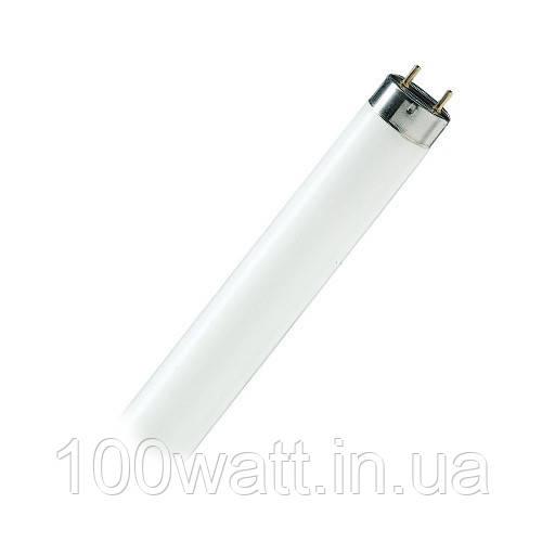Лампа люминесцентная Т8 10W 6400К G13