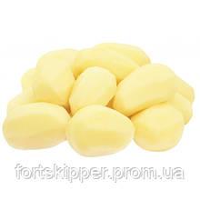 Лінія абразивного очищення картоплі 1000-1500 кг/годину
