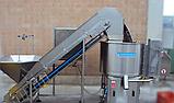 Лінія абразивного очищення картоплі 1000-1500 кг/годину, фото 2
