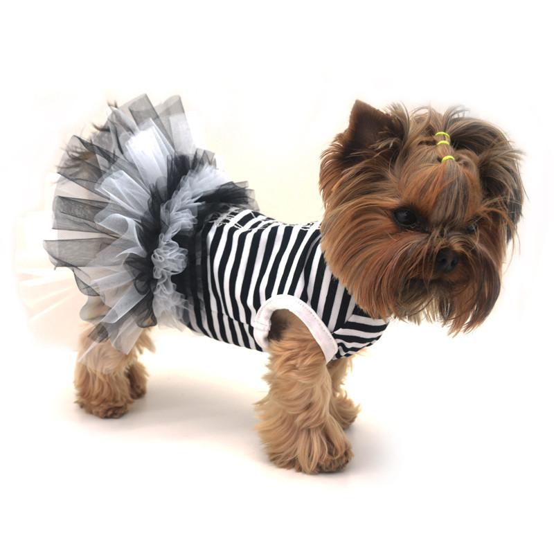 Платье для собак Карнавал Той-теръер 25 х 34 см